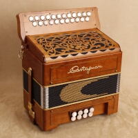 Castagnari Dinn III Special button accordion