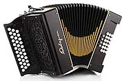 Castagnari Handry 2000 button accordion